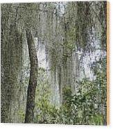 Island Moss Wood Print