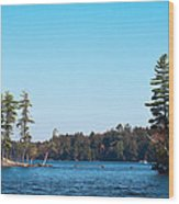 Island On The Fulton Chain Of Lakes Wood Print