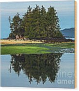 Island Reflection Wood Print