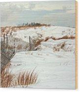 Island Snow Wood Print