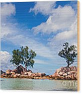 Islands And Clouds, The Seychelles Wood Print