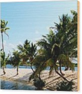 Isle @ Camana Bay Wood Print