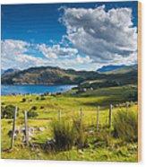Isle Of Skye In Scotland Wood Print