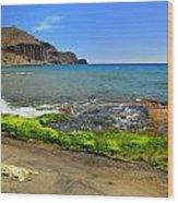 Isleta Del Moro Beach Wood Print
