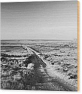 isolated single track road over peat bog heading down to the sea Gweedore county Donegal Republic of Ireland Wood Print