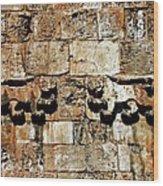 Israel Wall Bas Relief Wood Print