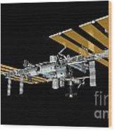 ISS Wood Print