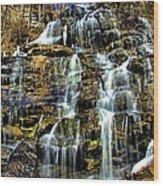 Issaqueena Falls With Rainbow Wood Print