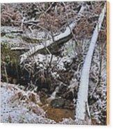 Ist Snow Of The Season Wood Print