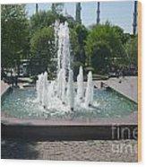 Istanbul Fountain  Wood Print