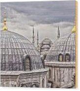 Istanbul Landmarks  Wood Print