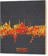 Istanbul Turkey Wood Print