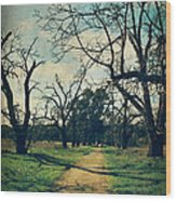 It All Depends Wood Print by Laurie Search