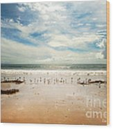 It Was A Sunny Day At The Beach From The Book My Ocean Wood Print