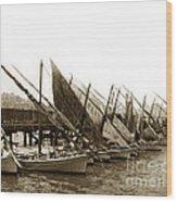 Italian Fishing Boats Fishermen's Wharf San Francisco Circa 1903 Wood Print