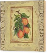 Italian Fruit Apricots Wood Print