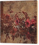 Italian Impasto Style Coral Floral Branch Wood Print
