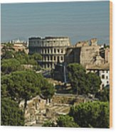 Italian Landscape With The Colosseum Rome Italy  Wood Print