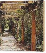Italian Pergola Hallway Wood Print