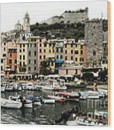 Italian Seaside Village Wood Print