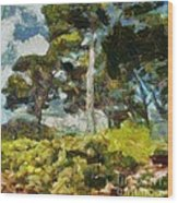 Italian Stone Pine Wood Print