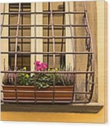 Italian Window Box Wood Print