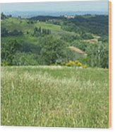 Italy 3 Wood Print