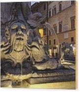 Italy. Lazio. Rome. Rome. Piazza Della Wood Print