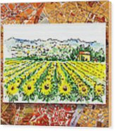 Italy Sketches Sunflowers Of Tuscany Wood Print
