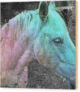 It's 1970 And I Want A Groovy Rainbow Pony Wood Print