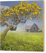 It's A Beautiful Day Wood Print by Debra and Dave Vanderlaan