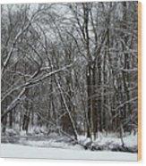 Its A Beautiful Winter Wood Print