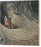 Fox - It's A Big World Out There Wood Print