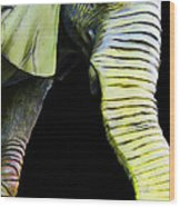 It's A Long Story - Unique Elephant Art Wood Print by Sharon Cummings