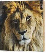 Its Good To Be King Portrait Illustration Wood Print