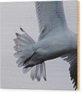 It's My Tern Wood Print