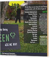 It's Not Easy Being Green Poster Wood Print