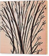 It's Orna-mental Wood Print by John Grace