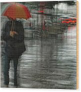 It's Raining Cats And Dogs Wood Print