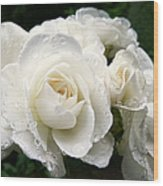 Ivory Rose Bouquet Wood Print by Jennie Marie Schell