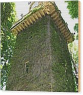 Ivy Along The Watchtower Wood Print