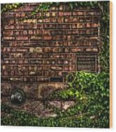 Ivy And Bricks Wood Print