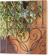 Ivy And Old Iron Gate Wood Print