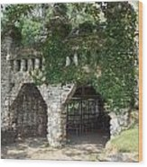Ivy Covered Stone Wall Wood Print