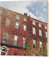 Ivy Covered Georgian Style Building In Wood Print