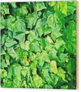 Ivy Wood Print by Les Cunliffe