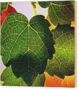 Ivy Light Wood Print
