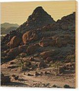 Iwanna Rock Wood Print