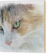 Izzy's Eyes Wood Print