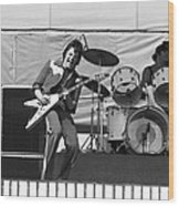 J. Geils On Stage In Oakland 1976 Wood Print